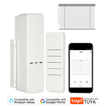 Drive-Motor Blinds Shutter Google Chain-Roller Shade Tuya Wifi Alexa Compatible Home-App