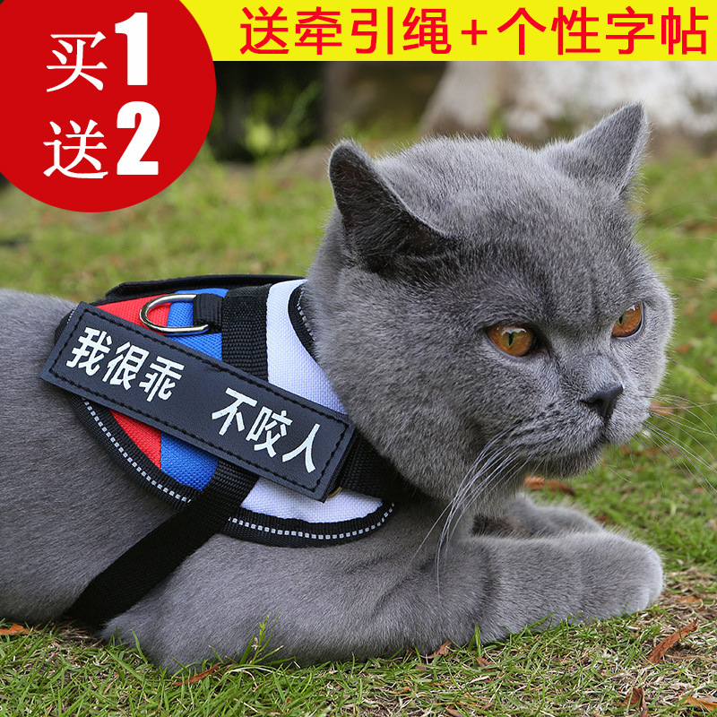 Vest Small And Medium Lanyard For Anti-Break Free Cat-Cute Cat Walker Lanyard Sub-Traction Dogs Unscalable Pet Walking