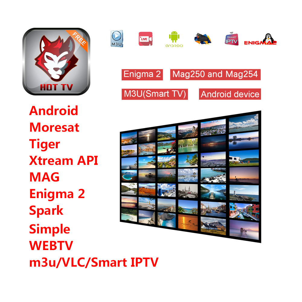 Europe Germany Spain France Netherlands Italy 1 Year IPTV Subscription For M3u Android Tv Box Enigma2 IOS Smart TV PC MAG