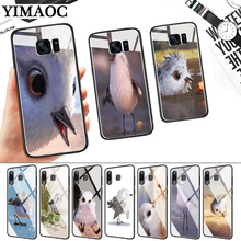 snipe piper Glass Case for Samsung S7 Edge S8 S9 S10 Plus S10E Note 8 9 10 A10 A30 A40 A50 A60 A70