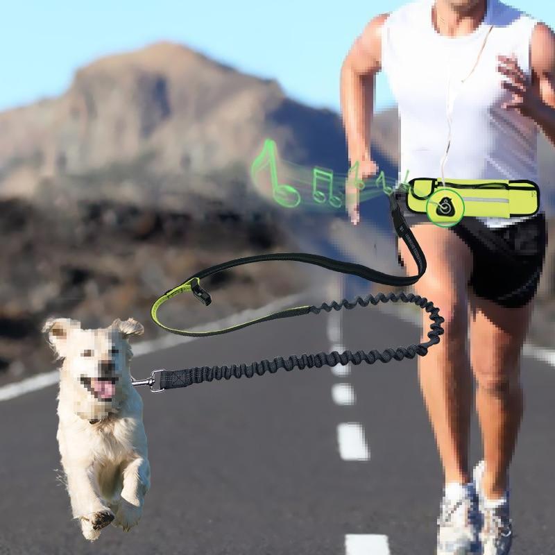 Hands Free Pet Dog Leash with Waist Bag Reflective Elastic Belt Running Dog  Nylon Leash Set Collar Harness Pet Accessories Leashes  - AliExpress