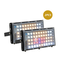 2pcs lights