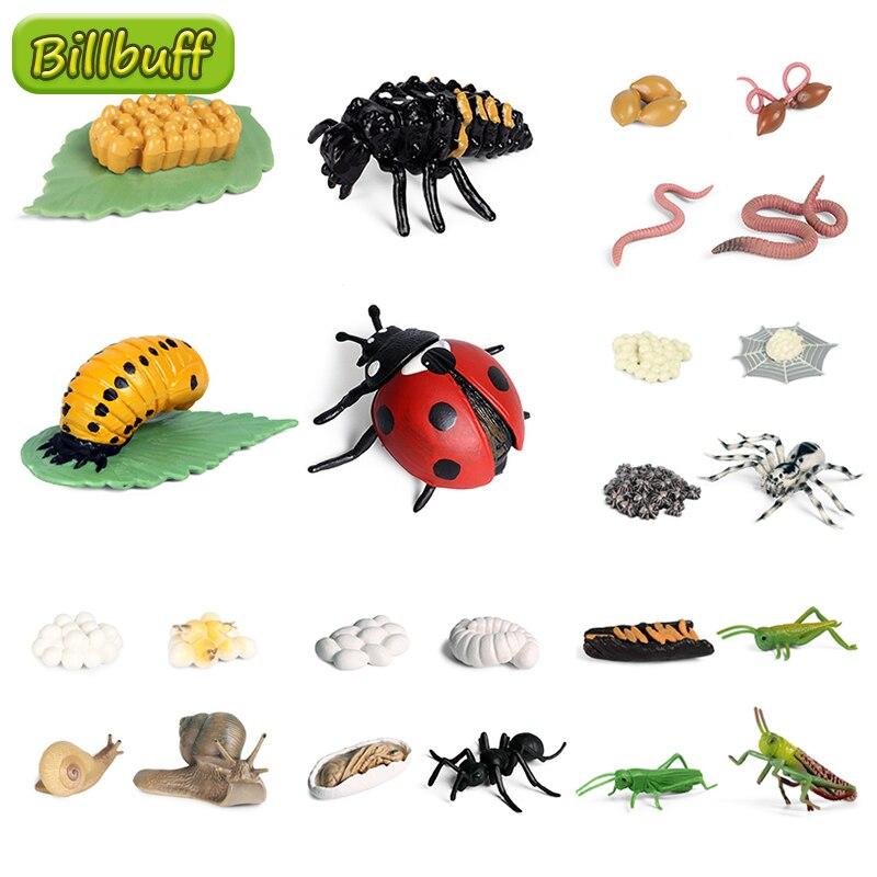Морская черепаха, цикл роста, улитки, божья коровка, земляной червь, модели жизненного цикла, моделирование животных, модель, экшн-фигурки, о...