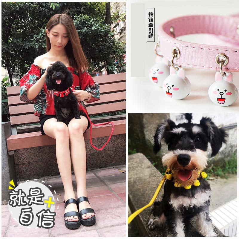 Dog Bell Medium Hand Holding Rope Dog Chain Teddy Small Quan Xiang Quan Dog Cat Dog Rope Pet Supplies