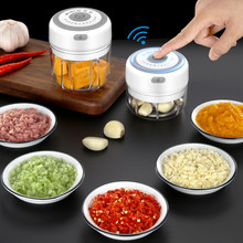 Garlic Cutter Shredder Mini Stainless Steel Fruit Vegetable Nuts Cutter Meat Garlic Grinder Chopper Slicer Kitchen Tool(China)