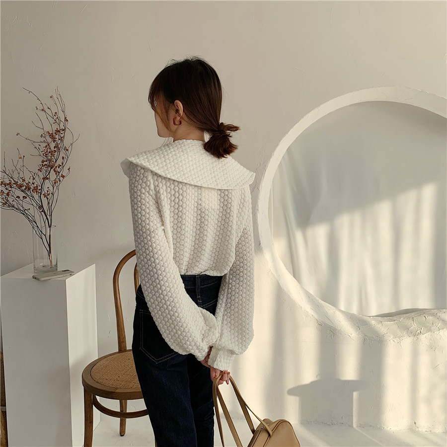 H3814658c15484951ad3dcd73ef1b6f5aA - Spring / Autumn Big Lapel Long Sleeves French Lace Buttons Blouse