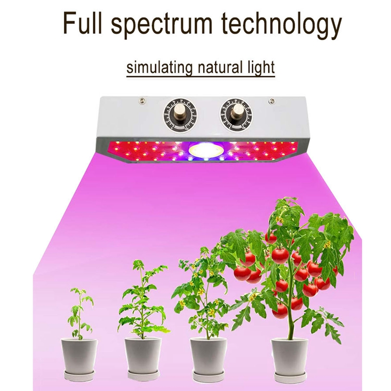 Full-Spectrum LED Growth Lamp 1000W Suitable For Indoor Flowers And Seedlings Hydroponic Greenhouse Suitable Plant Lamp