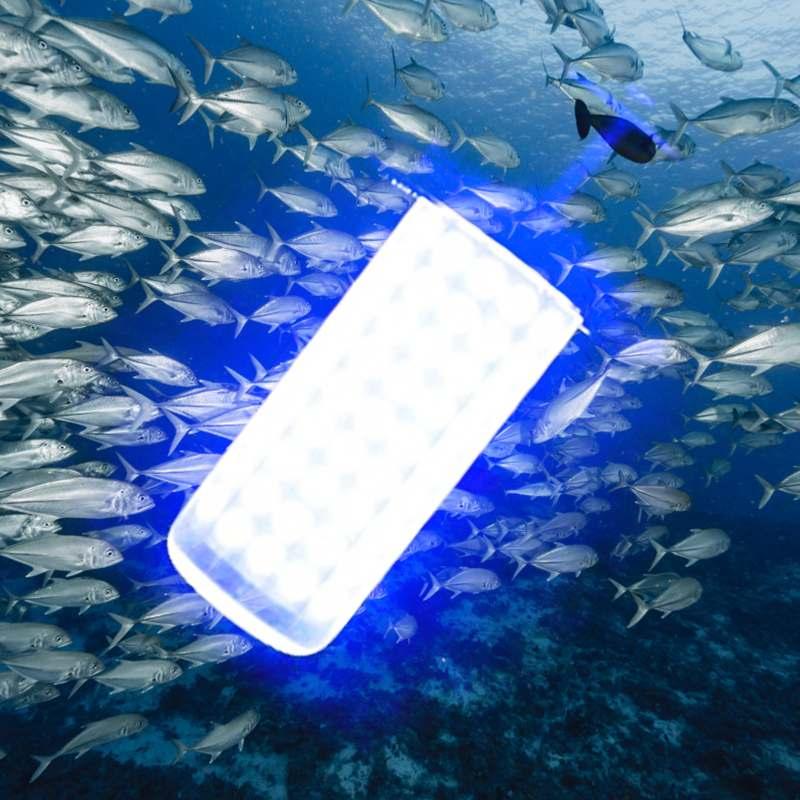 Outdoor 0 30m Unterwasser Licht IP68 Wasserdicht für Meer Nacht Angeln LED Locken Beleuchtung DC12V 50/ 60W Fisch Attraktor Lampe - 4