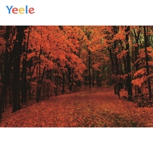 Vinyl Backdrops Autumn Trees Forest Paths Landscape Red Leaves Photography Personalized Photographic Background For Photo Studio white snow forest trees photo studio photography backdrops vinyl foto background