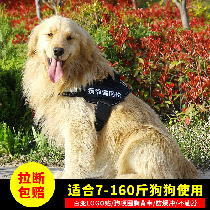 Dog Hand Holding Rope Neck Ring Thoracic Chain Dog Rope Husky Golden Retriever Suspender Strap Small Unscalable Dog Dog