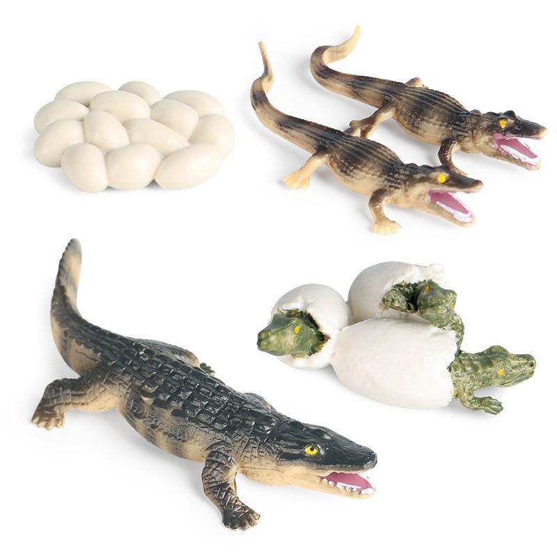 Детская Когнитивная модель диких животных, модель крокодила, цикл роста, осьминог, стрекоза, ПВХ Подвижная кукла, коллекционные игрушки для ...