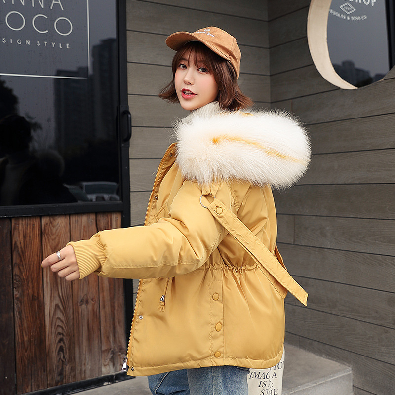 Photo Shoot 2019 Autumn And Winter New Style Down Jacket Cotton-padded Clothes Women's Korean-style Fashion Hooded Short Cotton-