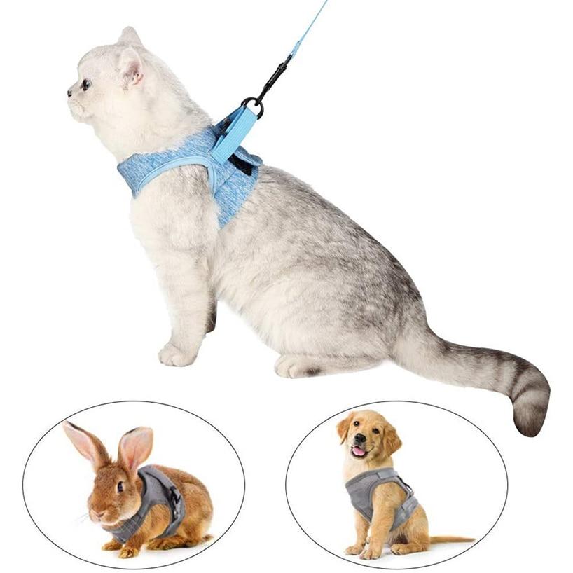 Arnés ajustable para mascotas, a prueba de agua, chaleco para cachorros, perros y conejos, arnés cómodo para caminar para gatitos y Correa, suministros para gatos