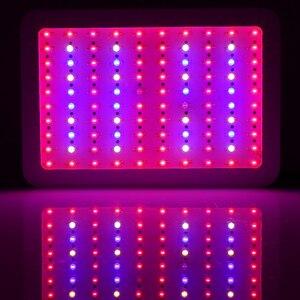 Image 5 - 300W 400W 600W 780W 800W ספקטרום מלא LED לגדול אור לחממה מקורה צמח ו פרח תשואה גבוהה צמח צמיחת מנורה