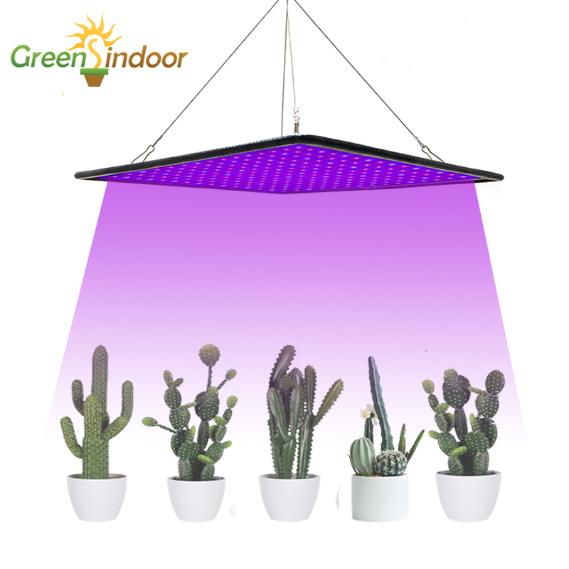 Grow Tent Phyto Lamp 1000W Led Grow Light Lamp For Plants Indoor Cactus Seedlings Growing Cacti Succulents Flowers Fitolamp Led