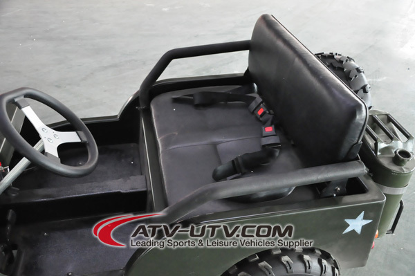 shaft/Chain 500W/800W ATV utility vehicle /2015 Quad with roof&winch