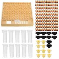 System hodowli królowej 100 kubki komórkowe praktyczne trwałe plastikowe Catcher Cage żółte narzędzia Cupkit Bee Nicot narzędzie pszczelarskie zestaw