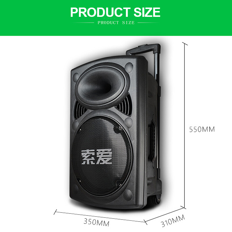 Big Speaker 300W Power Outdoor Bluetooth Wireless Microphone Pull Rod Remote Controller FM Radio Support TF Subwoofer 6