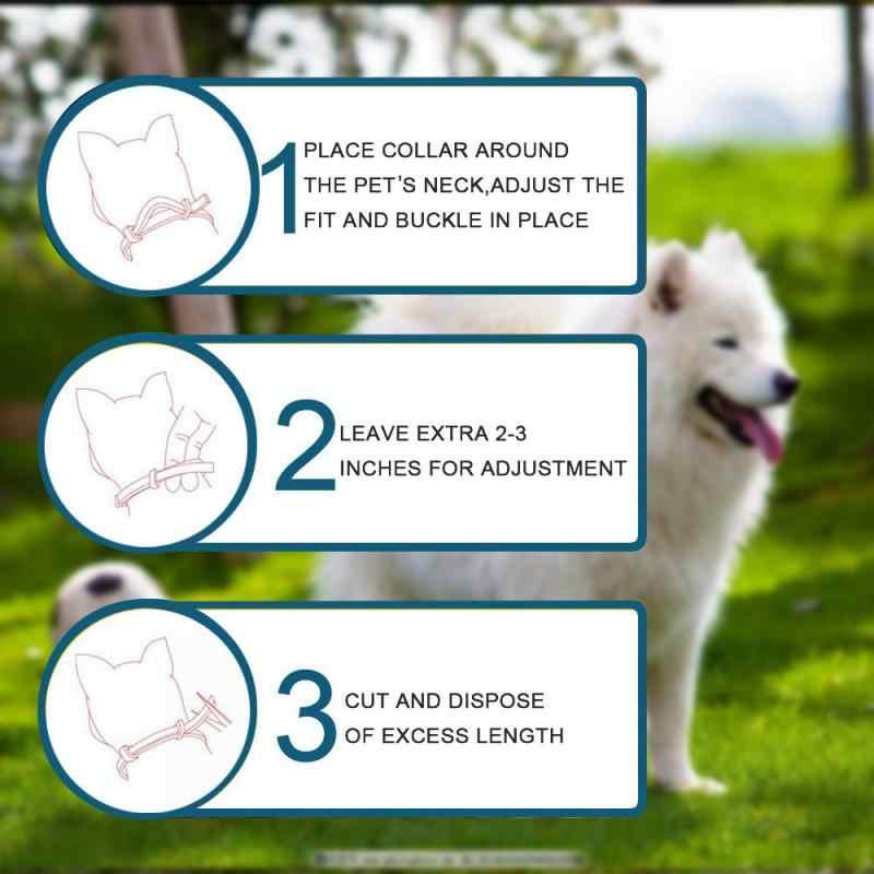 2019 חדש מסיר פשפשים וקרציות צווארון כלבים חתולים עד 8 חודש טיק פשפשים צווארון נגד היתושים דוחה חרקים
