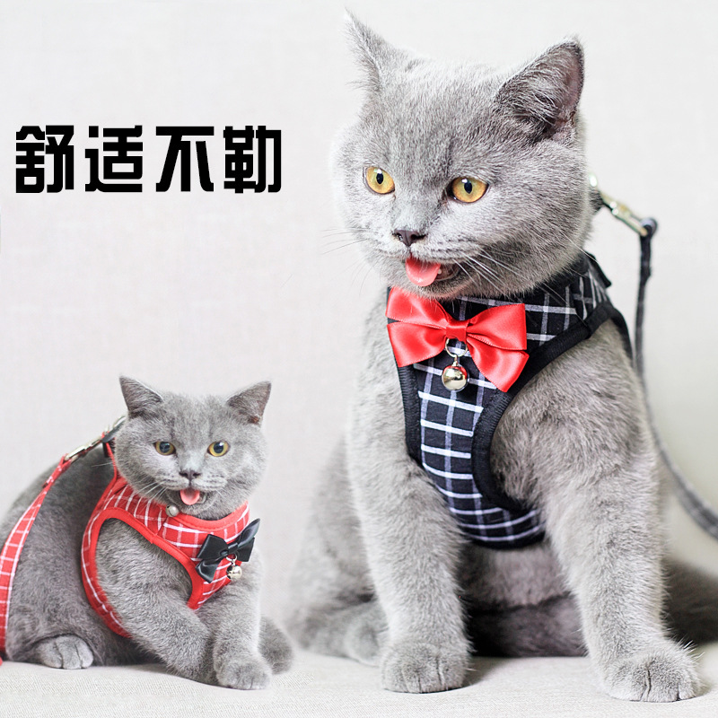 Small Dogs Chest And Back With Dog Mao Sheng Set Cat Cool Chest And Back Hand Holding Rope