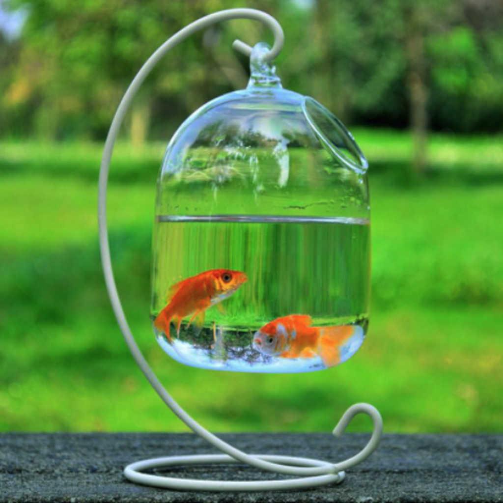 Klare Hängende Glas Aquarium Fisch Schüssel Fisch Tank Blume Pflanze Vase Weiß Rack Fishbowls Behälter Home Decor Pet Liefert