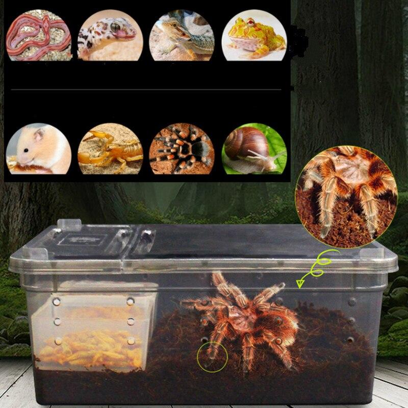 Reptile Supplies Terrarium Transparent Plastic Box Insect Reptile Transport Breeding Live Food Feeding Box 19x12.5x7.5cm
