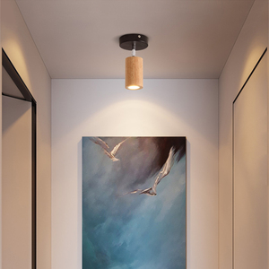 Image 2 - LED 통 표면 6W 천장 조명 Led 천장 Downlight 북유럽 철 + 나무 스포트 라이트 실내 로비, 거실