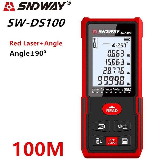 SW-DS100 100M