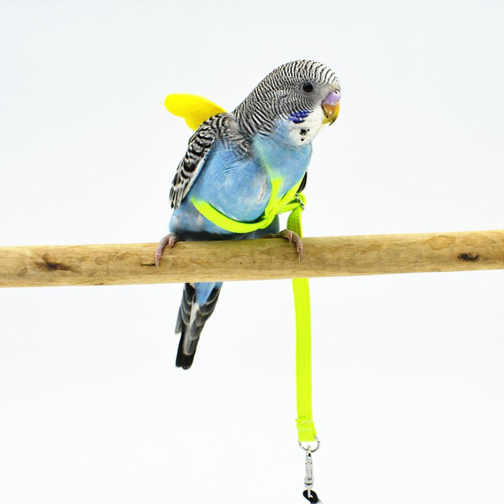 Pet Parrot Bird Harness And Leash Flying Rope Straps Outdoor Training Traction Rope For Budgerigar Lov