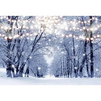 Customized printing snow light scenery photo backgrounds for winter event party portrait photography studio backdrops