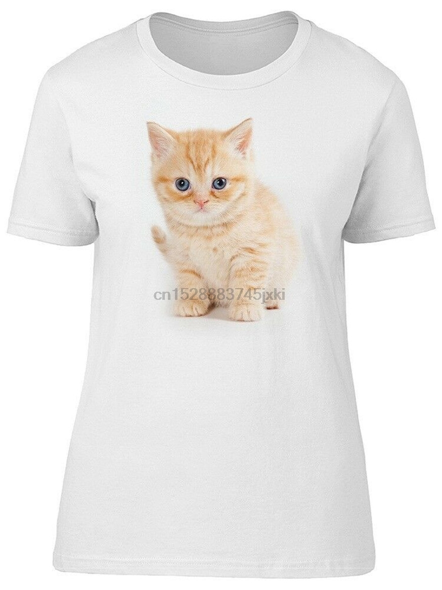 Shirt Birthday Gift Tee Beautiful Baby Kitten Cute Cat Womens Tee Image By T Shirts Aliexpress