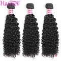 Hairvev malaisie crépus bouclés cheveux armure paquets 3 ou 4 paquets couleur naturelle cheveux humains paquets Remy cheveux livraison gratuite