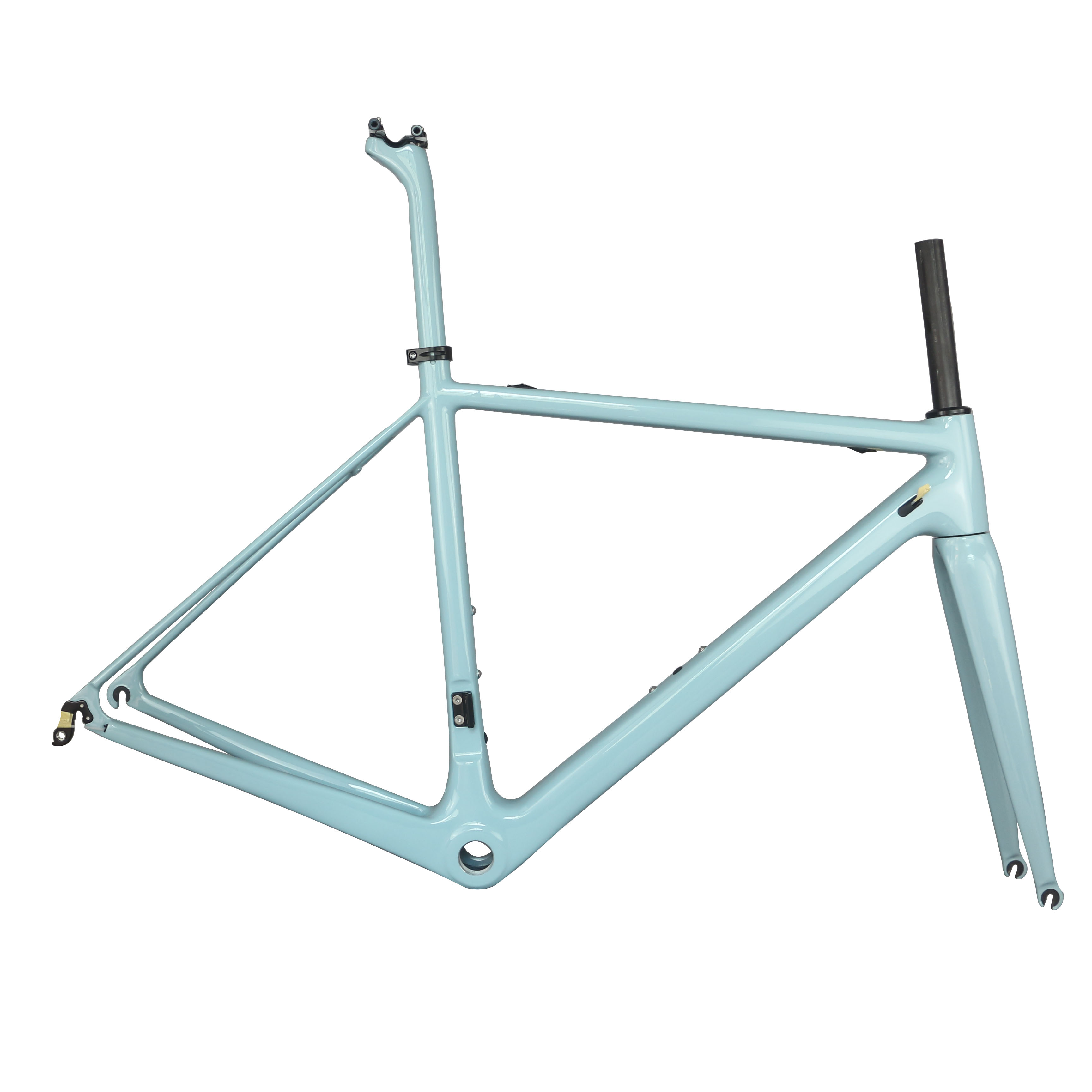 2020 Newest Customized Paint BSA And BB30 Toray Carbon Fiber T1000 For 27.2mm Seat Post Road Frame  FM066