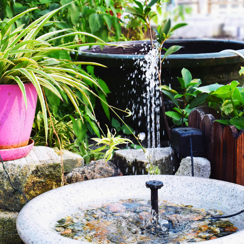 bird bath water fountain fish outdoor