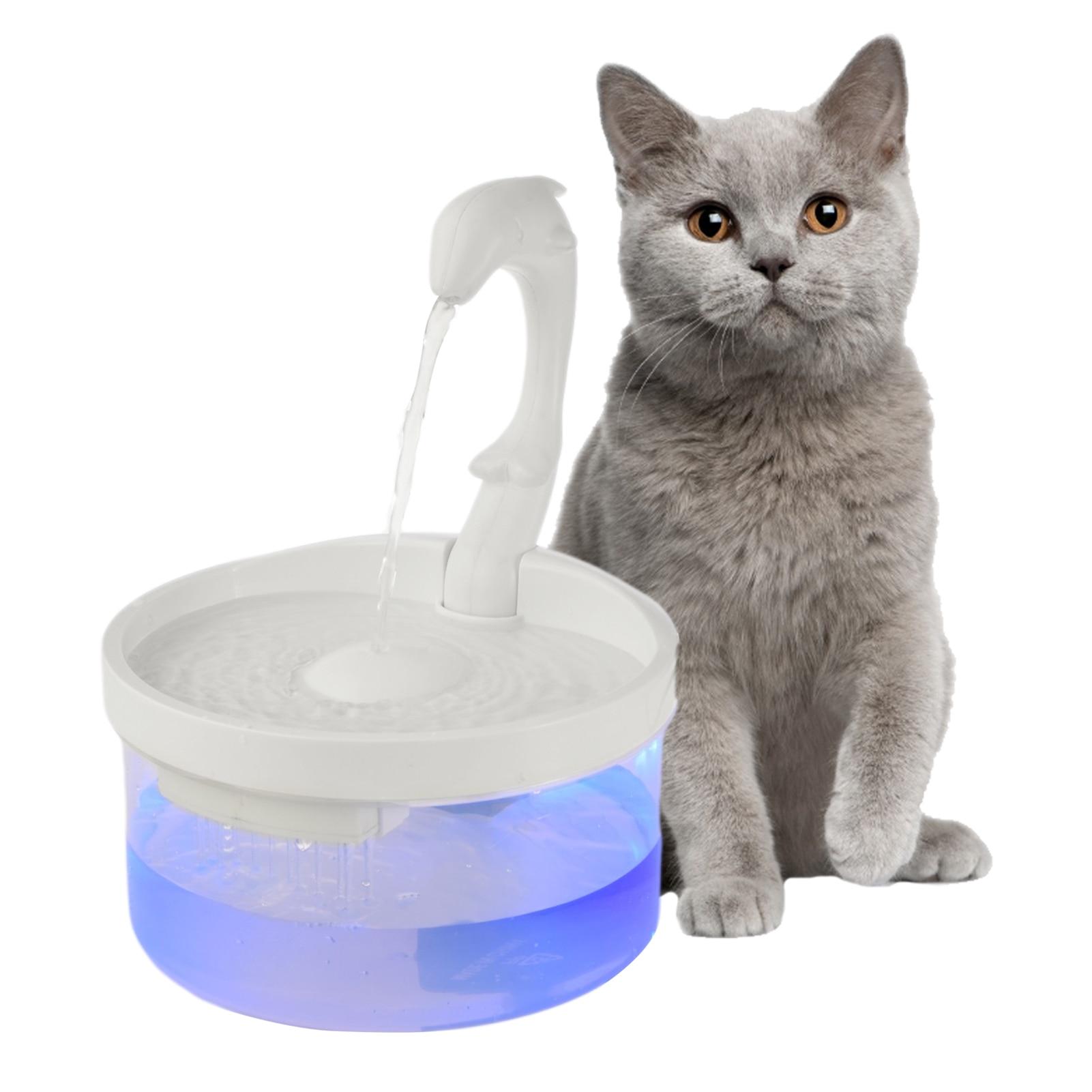 Cheap Suprimentos de alimentação para gatos