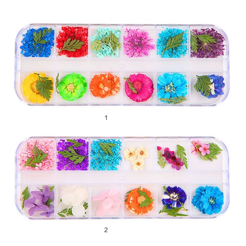12 Pcs/box 9Styles Dried Flowers Epoxy Sheet UV Decoration Resin Silicone Mold DIY Jewelry Filler Beauty Nail Accessory