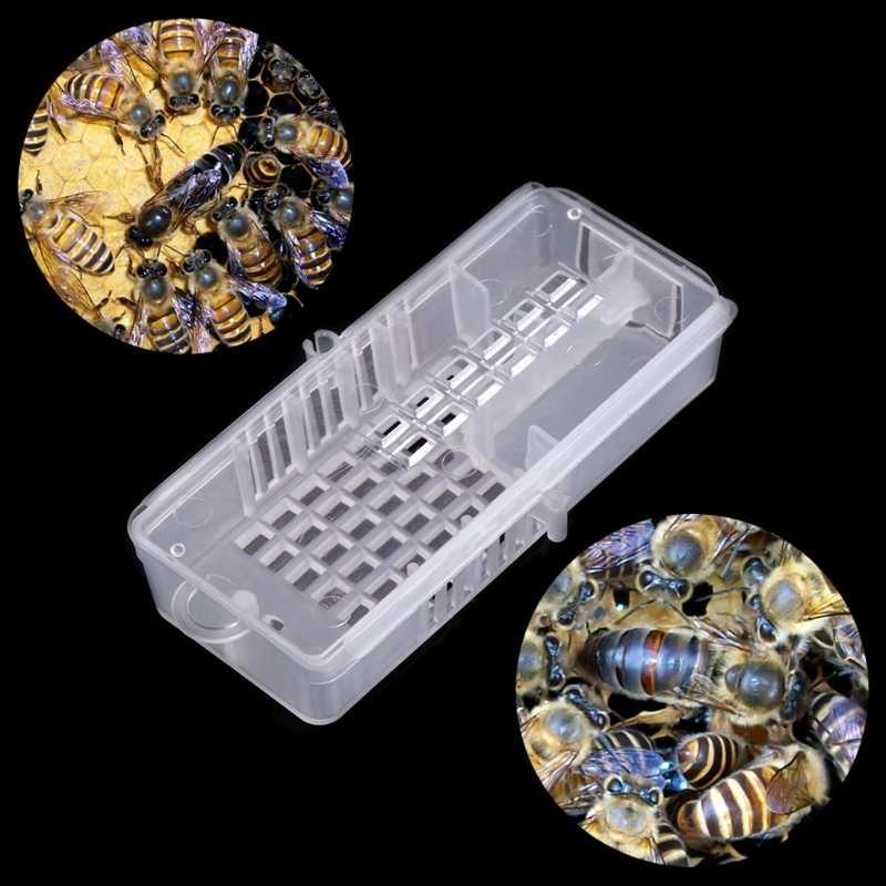תיבת דבורת דבש כוורות פלסטיק כוורת כלוב לתפוס כלי נע ציוד התאמה