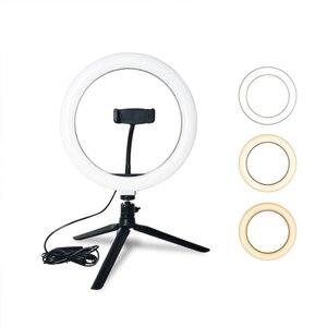 Image 1 - CZ abd fotoğrafçılık LED halka lamba halka ışık stüdyosu fotoğraf Video kısılabilir lamba Tripod standı Selfie kamera telefonu çekim Video