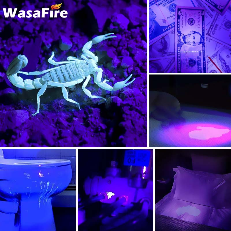 LED UV Flashlight Q5 Ultra Violet Lamp with Zoom Function Mini UV Black Light Pet Urine Stains Detector Scorpion Hunting in LED Flashlights from Lights Lighting