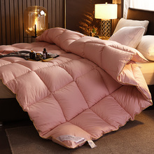 95% down filling Quilt luxury thick warm comforter air-conditioned four seasons blanket fall winter velvet quilt