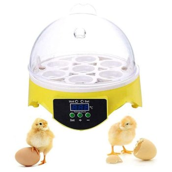 7 Eggs Incubator Bird Egg Incubator Semi-automatic Miniature Egg Incubator Pigeon Household Incubators 2