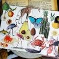 Papel Vitela 50pcs Enciclopédia da Vida Adesivos para Scrapbooking Feliz Planejador/Cartão Que Faz/Journaling