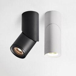 Dimmable Rotatif LED Downlights 10W15W20W COB LED Spots De Plafond AC110-220V MUR LED Lampe Blanche Froide Chaude Éclairage Intérieur