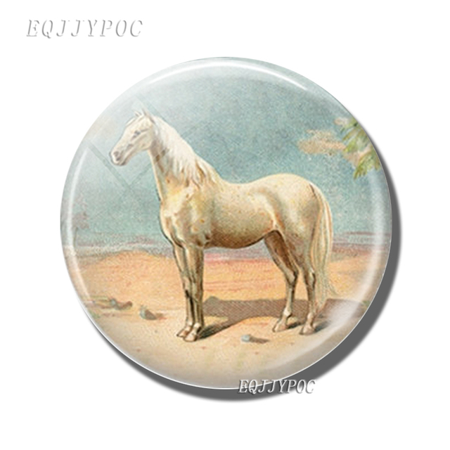 Fridge Magnets Art Horse Glass Dome Cabochon Lovely Animal Refrigerator Magnetic Sticker Fairy Tale Home Decoration 2