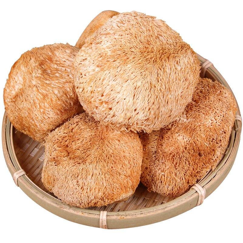 Lions Mane Hericium Erinaceus Mushroom