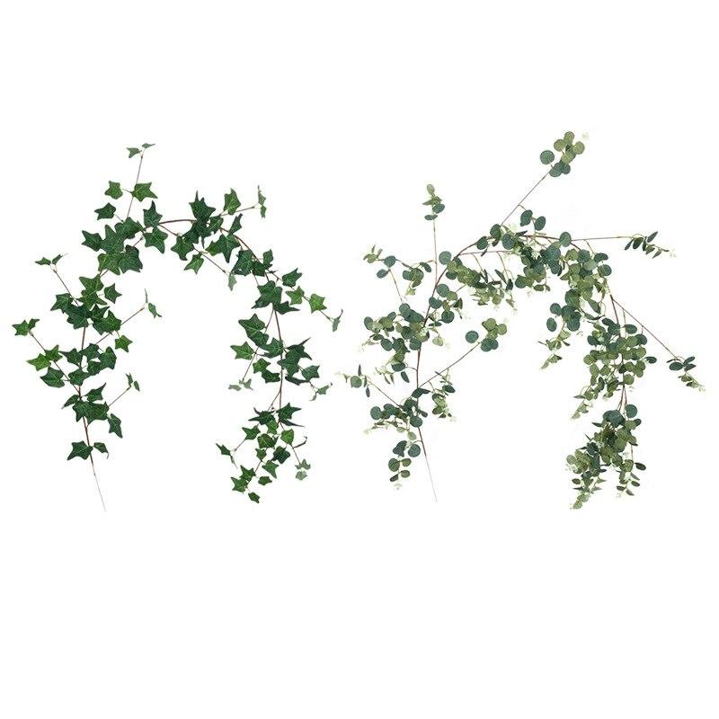 Xin ou grec 1.7 M Eucalyptus lierre rotin décoration d'enroulement