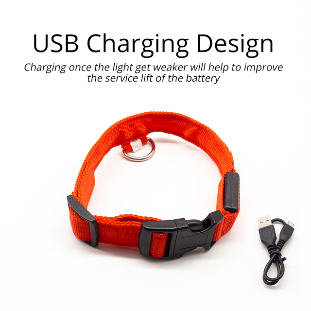 USB Charging Led Dog Collar Anti-Lost/Avoid Car Accident Collar For Dogs Puppies Dog Collars Leads LED Supplies Pet Products 4