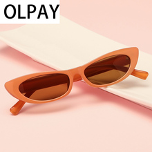 Retro Small Cat Eye Sunglasses For Women Brand Designe Fashion eye Sunglass es Luxury Designer Vintage  uv400