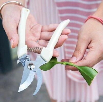 Taman Gunting Grafting Alat Buah Pohon Pemangkasan Gunting Bonsai Pruners Taman Gunting Berkebun Secateurs Mudah Pruners