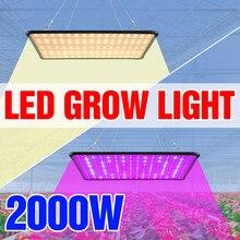 1000W lampa fito Led pełne spektrum rosną lampy 1500W Phyto światło rozproszone 2000W Led rośliny doniczkowe żarówki US ue UK wtyczka Fitolampy